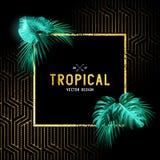 Diseño tropical del vintage Imagen de archivo
