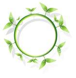 Diseño verde Foto de archivo libre de regalías