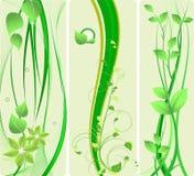 Diseño verde   Fotos de archivo