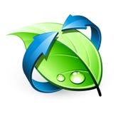 Diseño verde de la hoja libre illustration