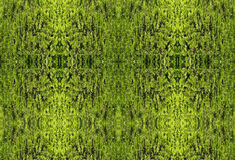 Diseño verde del papel pintado Foto de archivo libre de regalías
