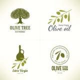 Diseño verde oliva de las etiquetas Imágenes de archivo libres de regalías