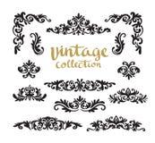 Diseños caligráficos ornamentales del vintage fijados Fotos de archivo libres de regalías