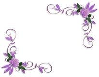 Diseños de la esquina de la frontera de las rosas púrpuras Foto de archivo