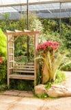 Diseños de la esquina minúsculos del flor del jardín y de instalaciones Fotos de archivo libres de regalías