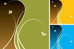 Diseños florales Imagenes de archivo