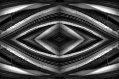 Diseños negros del extracto del cactus del desierto foto de archivo libre de regalías