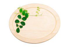 Dise and leaf. Cutting board  with leaves isolated on white background Stock Images