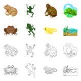 Dise?o del vector de icono de la fauna y del pantano Colecci?n de s?mbolo com?n de la fauna y del reptil para la web stock de ilustración