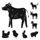 Dise?o del vector de rancho y de logotipo org?nico Colecci?n de icono del vector del rancho y de la comida para la acci?n libre illustration
