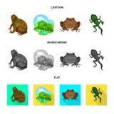 Dise?o del vector de s?mbolo de la fauna y del pantano Fije del icono del vector de la fauna y del reptil para la acci?n ilustración del vector