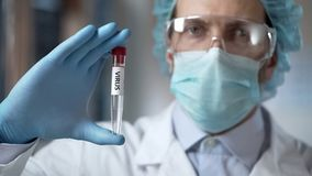 Disease control lab assistant studying strains of virus for invention of vaccine stock images
