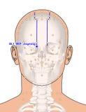 Disegnando con lo scheletro, punto BL1 Jingming, 3D Illust di agopuntura Fotografia Stock