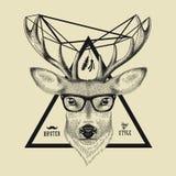 Disegnato a mano di un cervo diriga nello stile dei pantaloni a vita bassa Vector l'illustrazione degli occhiali d'uso di un cerv Immagine Stock Libera da Diritti
