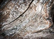 Disegni astratti su vecchio legno stagionato Immagini Stock