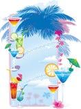 Disegni del modello del menu del cocktail Immagini Stock