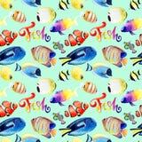 Disegni dell'acquerello del pesce di Mar Rosso luminoso royalty illustrazione gratis