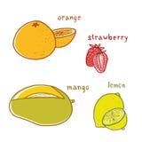 Disegni di sapori della frutta messi Immagine Stock