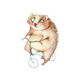Disegni a matita l'illustrazione, animale di divertimento su una bicicletta Fotografie Stock