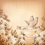 Disegni a matita l'uccello del disegno della mano in fiore della pansé e del bagno Fotografia Stock