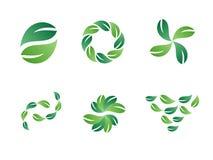 Disegni verdi di marchio di vettore del foglio Fotografie Stock Libere da Diritti