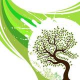 Disegno astratto dell'albero illustrazione di stock