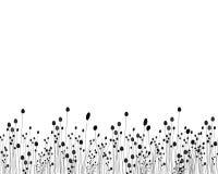 Disegno in bianco e nero dell'erba Fotografia Stock Libera da Diritti