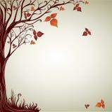 Disegno con l'albero decorativo dai fogli di autunno Fotografie Stock