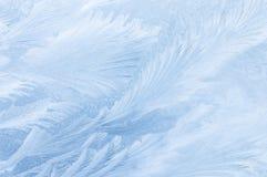 Disegno congelato del ghiaccio Fotografia Stock