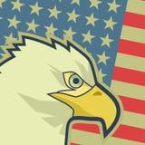 Bandiera Stati Uniti di Eagle Fotografia Stock Libera da Diritti