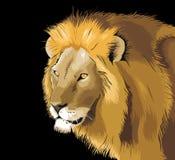 Disegno creativo di vettore dell'illustrazione del leone Fotografie Stock Libere da Diritti