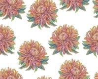 Disegno d'annata dei fiori illustrazione di stock