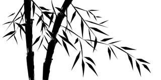 Disegno degli alberi di bambù chineese Fotografie Stock Libere da Diritti