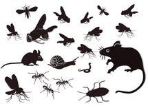 Disegno dei roditori e degli insetti Fotografie Stock Libere da Diritti