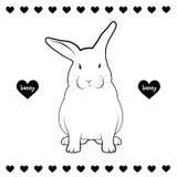 Disegno del coniglio Immagine Stock