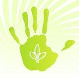 Disegno del foglio di ecologia Immagini Stock Libere da Diritti