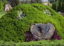 Disegno del giardino Immagine Stock