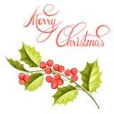 Disegno del ramo del vischio di Natale Fotografie Stock