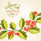 Disegno del ramo del vischio di Natale Fotografia Stock Libera da Diritti