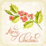 Disegno del ramo del vischio di Natale Fotografie Stock Libere da Diritti
