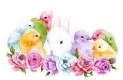 Disegno dell'acquerello di un coniglio con i polli in fiori Immagini Stock