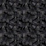 Disegno dell'acquerello di una farfalla di notte della farfalla, di una farfalla terribile su una festa di Halloween con un crani Immagini Stock Libere da Diritti