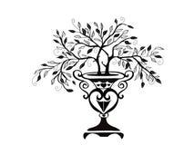 Disegno dell'albero dei bonsai Fotografia Stock