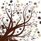 Disegno dell'albero di autunno di vettore Fotografia Stock Libera da Diritti