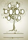 Disegno dell'albero di famiglia di vettore con i blocchi per grafici Fotografia Stock