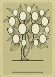Disegno dell'albero di famiglia di vettore con i blocchi per grafici royalty illustrazione gratis