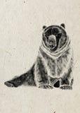 Disegno dell'orso spaventoso sedentario, siluetta nera sul fondo beige della carta di riso Immagini Stock