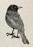 Disegno dell'uccello trupial, siluetta nera sul fondo beige della carta di riso Immagini Stock Libere da Diritti