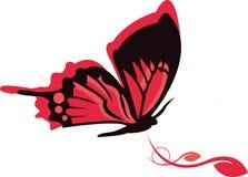Disegno della farfalla Immagini Stock