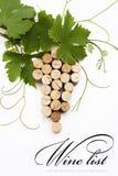 Disegno della lista di vino di concetto Fotografie Stock Libere da Diritti